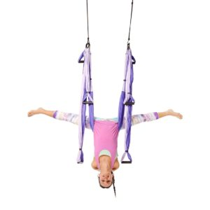 best aerial yoga trapeze review